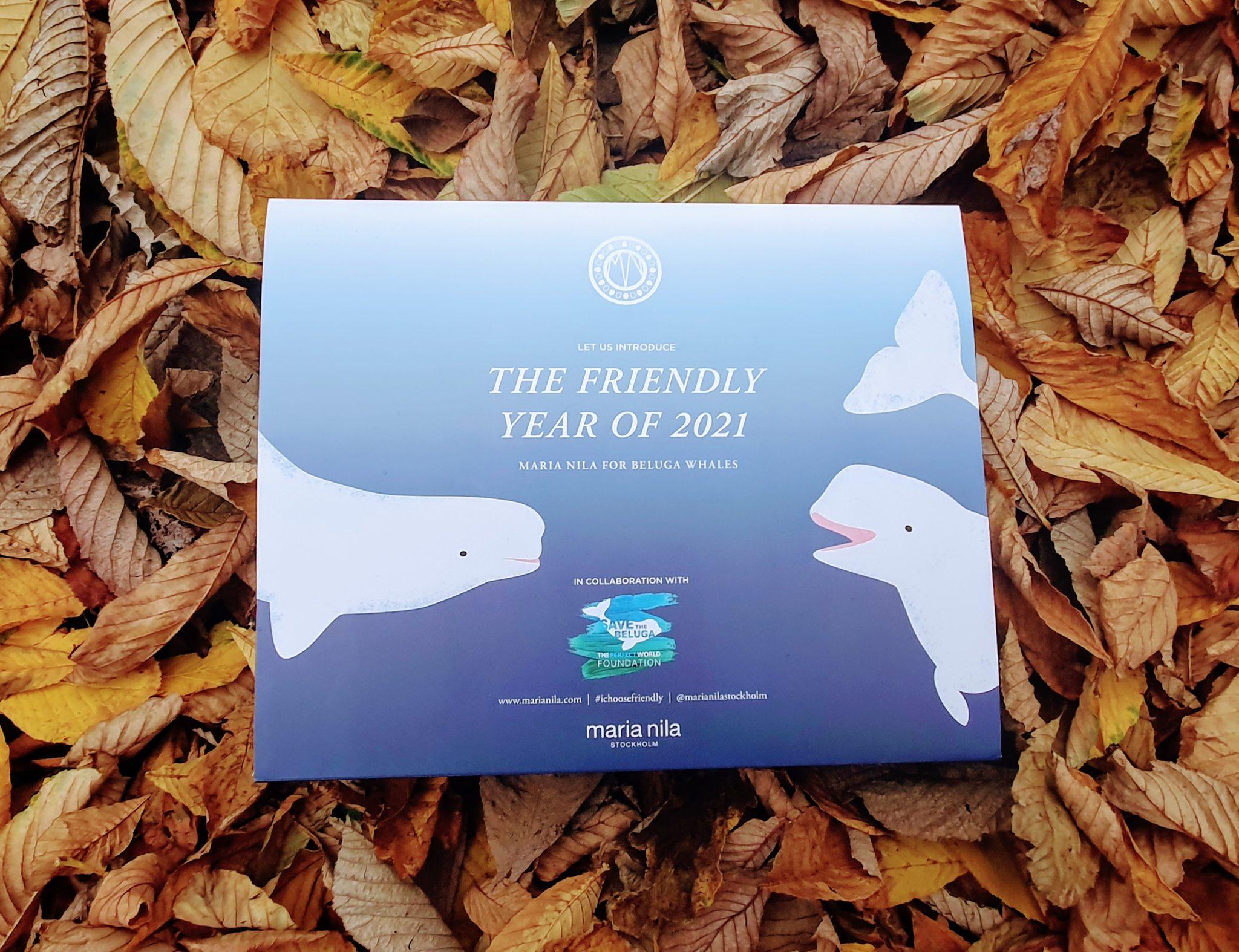 Sea Life Trust's Beluga Whale Maria Nila